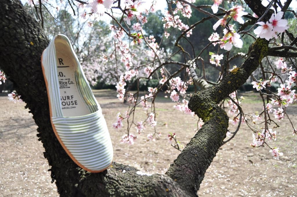 amorshoes-thericeco-camping-thesurfhouse