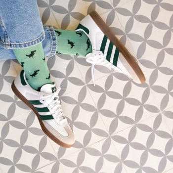 AmorShoes_amorsocks-calcetines-socks-dinos-dinosaurios-trex-tiranoraurio-verde-green